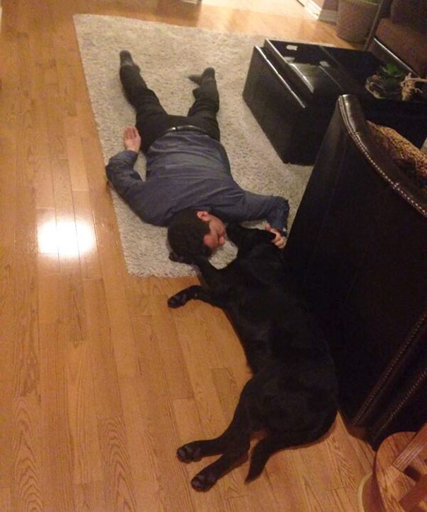 dads-who-didnt-want-dogs-21