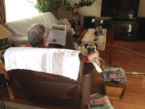 dads-who-didnt-want-dogs-27