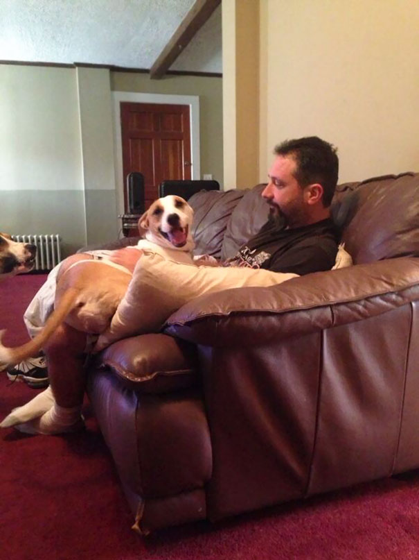 dads-who-didnt-want-dogs-29