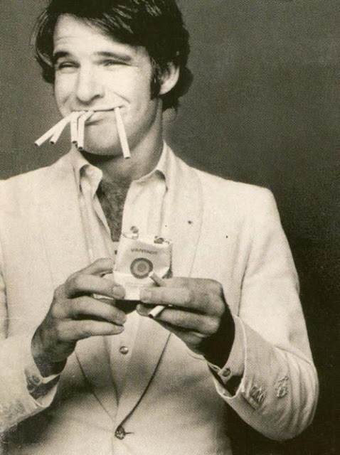 hollywood-stars-steve-martin