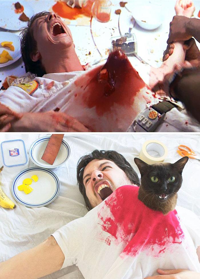 movie-cats-recreate-famous-movie-scenes-3-et-02